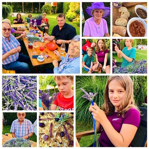 Provence und Lavendel | weltzuhause.at
